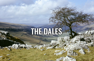 thedales-area