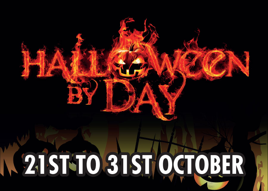 Halloween by Day at Thornton Hall Country Park - Yorkshire Dales